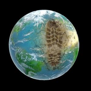 Den ökologischen Fußabdruck verkleinern | derkarton.net